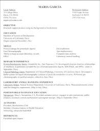 internship resume sample for computer science college student