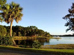 Florida scenery images Photo usa florida nature palm trees landscape photography 2048x1536 jpg