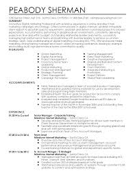 resume format for sales and marketing professional digital marketing professional templates to showcase resume templates digital marketing professional
