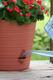 using self watering planters gardening channel