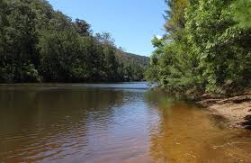 colo meroo campground nsw national parks
