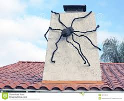giant spider stock photo image 48010535
