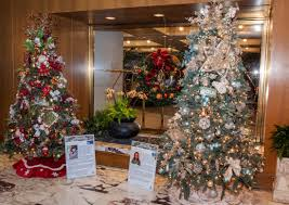 100 best care for live christmas trees pennsylvania