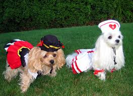 Puppy Halloween Costumes Love Dog Costumes Pet Halloween Dog Costume Yuppy