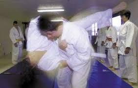 Hamilton Of Martial Arts Jiu by Art Of Self Defense Hamilton Martial Arts Instructor Stresses