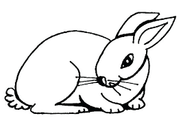 Rabbit Coloring Pages Bunny Coloring Page Roger Rabbit Coloring Rabbit Colouring Page