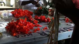 Where Can I Buy Rose Petals How To Make Rose Petal Garlands 9884436365 Youtube