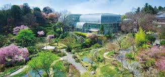 What Time Does The Botanical Gardens Close by Kochi Prefectural Makino Botanical Garden Museum Things To Do