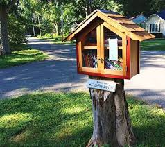 224 best tiny libraries images on pinterest little free