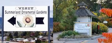contact summerland ornamental gardens