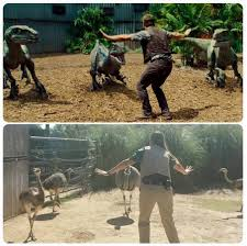 Meme Raptor - zookeepers are recreating chris pratt s moves in jurassic world