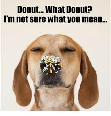 Donut Memes - donutwhat donut m not sure what you mean meme on astrologymemes com