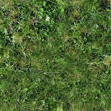 ground textures forest ground textures grass 7 png opengameart org