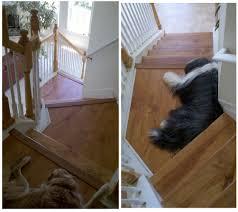 Laminate Floor Options New Laminate Flooring Options