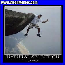 natural selection progress clean memes