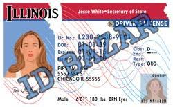 illinois driver license psd template