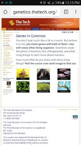 262 best dna rna proteins images on pinterest life science ap