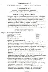Examples Of Professional Summary For A Resume by Download Resume Professional Summary Haadyaooverbayresort Com