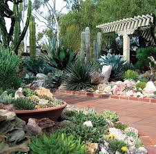 flower places best places in orange county to see flowers cbs los angeles