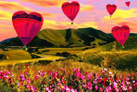 Photos Of Flowers Fields Seasons Holidays Beloved Hearts Balloons Flowers Nature