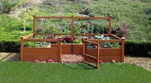 chic build a raised vegetable garden bed raised bed vegetable
