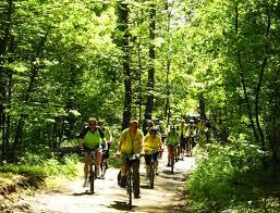 le si e trasa rodzinna w lesie miejskim wrower pl rowery od a do z