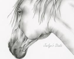 horse drawing etsy