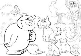 wild forest animals for coloring book vector illustration igor