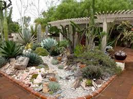 Succulent Rock Garden by Small Cactus Rock Garden Ideas Mehmetcetinsozler Com