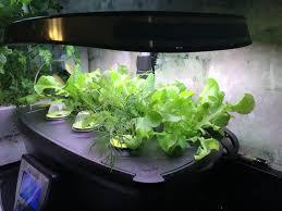 Aerogarden by Easy Gardening With Aerogarden No Need For A Green Thumb