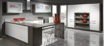 Modern German Kitchen Designs Boston Kitchen Designs Boston Kitchen Design David Raymond Design