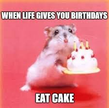 Hilarious Birthday Meme - cute birthday meme image1 birthday wishes