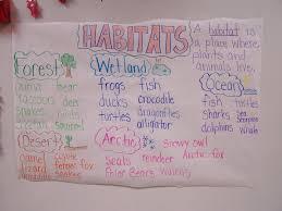 animal worksheet new 826 animal habitats worksheets for second grade