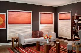 Graber Blinds Repair Graber Pleated Shades Day Night U2013 Blindsmax Com