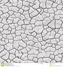 White Oak Texture Seamless White Cracked Surface Seamless Texture Royalty Free Stock Images