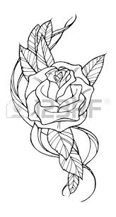 beautiful rose tattoo outline black and white illustration