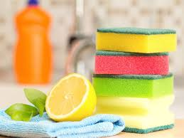 kitchen sponge dos and donts of kitchen sponge safety