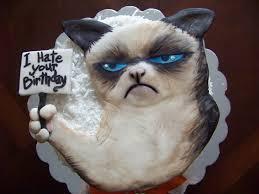 Grumpy Cat Coma Meme - grumpy cat cake grumpy cat pinterest grumpy cat cakes and
