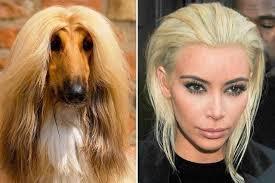 Memes De Kim Kardashian - el universal espectáculos memes se burlan del nuevo look de kim
