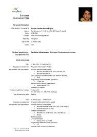 cover letter opening statements europass cv brunosimoes