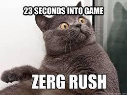 Zerg Rush Meme - best 25 zerg rush meme ideas on pinterest starcraft starcraft