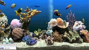 wallpaper ikan bergerak untuk pc how to get an aquarium as your desktop background xp vista