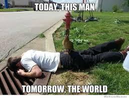 Meme Duck - world domination duck weknowmemes