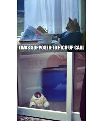 Ikea Monkey Meme - the best of ikea monkey the meme