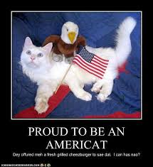 Funny 4th Of July Memes - funny pictures patriotic fourth of july cats 4th of july