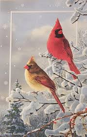 pumpernickel greeting cards winter color boxed embossed bird christmas cards