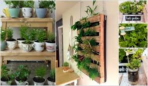 indoor kitchen garden ideas 10 cool diy ideas to grow an indoor herb garden