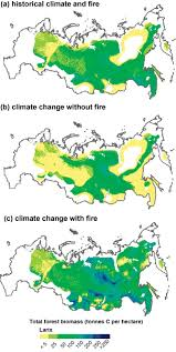 Wildland Fire Canada Conference 2014 by Fire Disturbance And Climate Change Implications For Russian