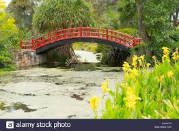 Wollongong Botanic Gardens Kawasaki Bridge Wollongong Botanic Gardens Stock Photo 171269493