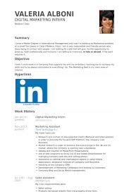 Resume For Marketing Job Resume For Marketing Industry Challengedsuggestions Cf